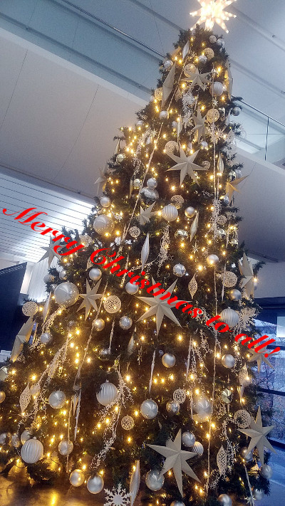 ★☆ Merry Christmas to all ★☆_f0209783_17143830.jpg