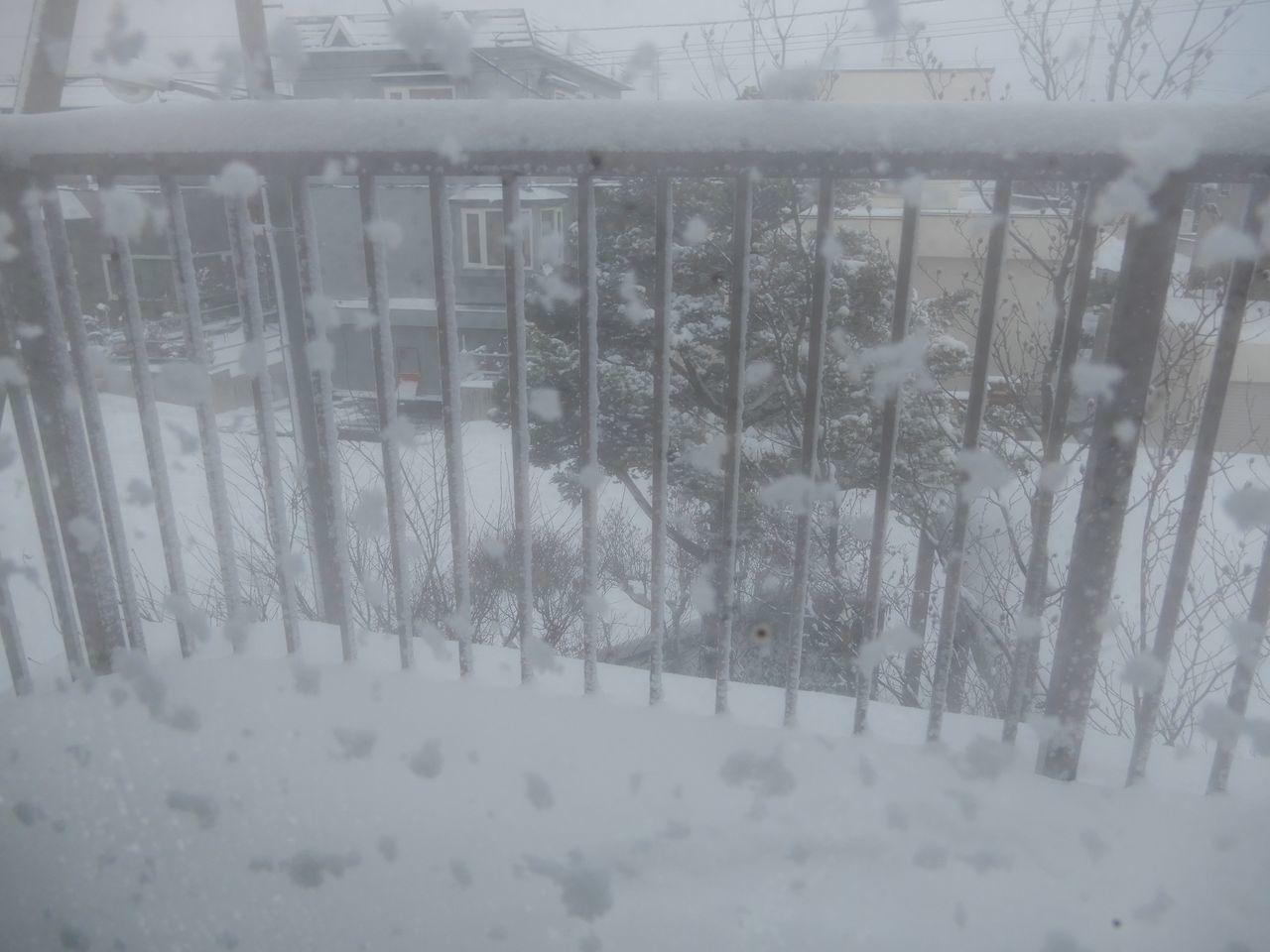 いきなり本格的真冬日戻る_c0025115_23260381.jpg