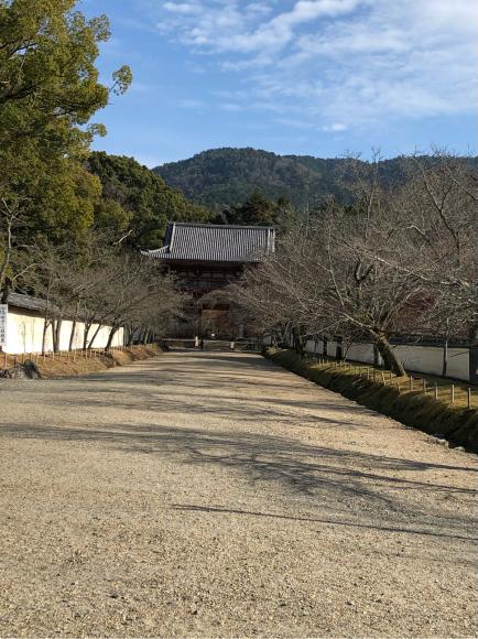 醍醐寺・上醍醐(京都市)_d0339676_16305092.jpg