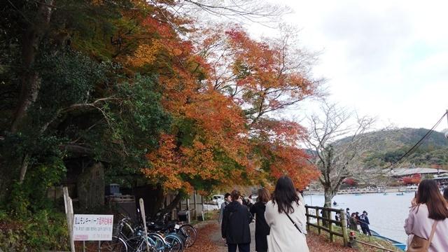 2020年秋の京都へ⑨嵐山散策を愉しむ_f0146587_18500149.jpg