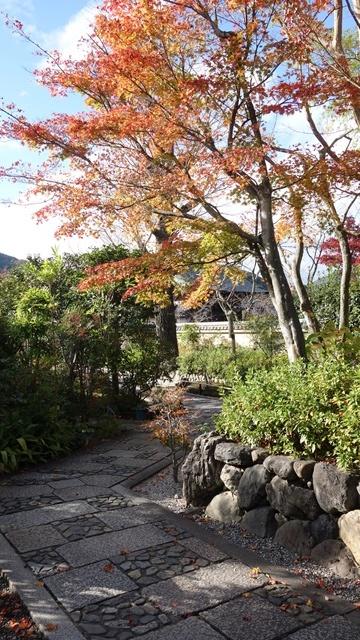 2020年秋の京都へ⑨嵐山散策を愉しむ_f0146587_18541787.jpg