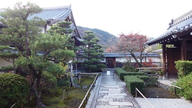 2020年秋の京都へ⑨嵐山散策を愉しむ_f0146587_18552898.jpg