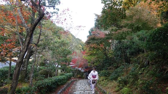2020年秋の京都へ⑨嵐山散策を愉しむ_f0146587_18591835.jpg