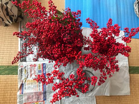 お正月のお飾り/yoshi_d0135801_22434647.jpg