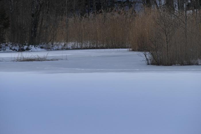 冬のびっき沼_d0106628_16203984.jpg
