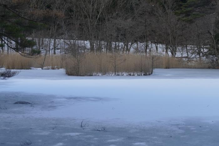 冬のびっき沼_d0106628_16214202.jpg