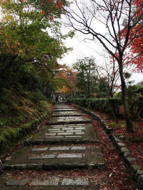 2020年秋の京都へ⑩あだしの念仏寺_f0146587_21390645.jpg