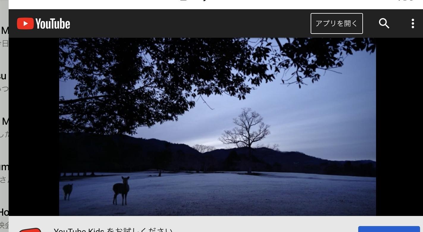 奈良、時の雫 映像作家 保山耕一作品上映会_f0389753_20035123.jpeg