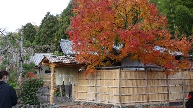 2020年秋の京都へ⑪嵐山最後は「こい茶屋デセール」へ_f0146587_19430987.jpg