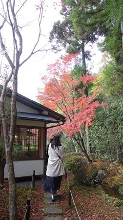 2020年秋の京都へ⑪嵐山最後は「こい茶屋デセール」へ_f0146587_19460054.jpg
