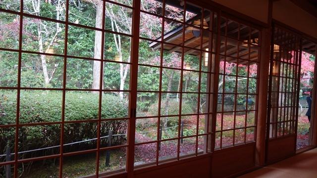 2020年秋の京都へ⑪嵐山最後は「こい茶屋デセール」へ_f0146587_19491747.jpg