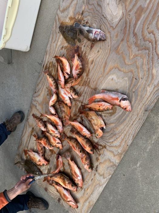今年の釣りキチ総集_b0150120_16453221.jpg
