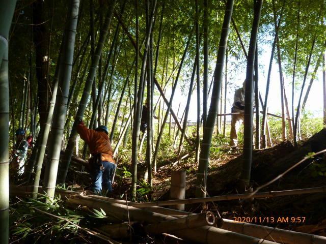 2020 年の締めくくり 竹林整備の報告など    高 野 史 郎_b0199122_23202132.jpg