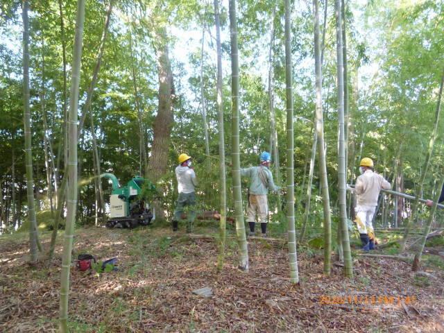 2020 年の締めくくり 竹林整備の報告など    高 野 史 郎_b0199122_23215982.jpg