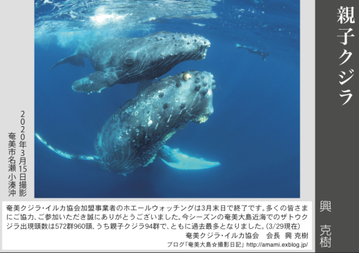 12/31 よいお年を_a0010095_12503941.jpg