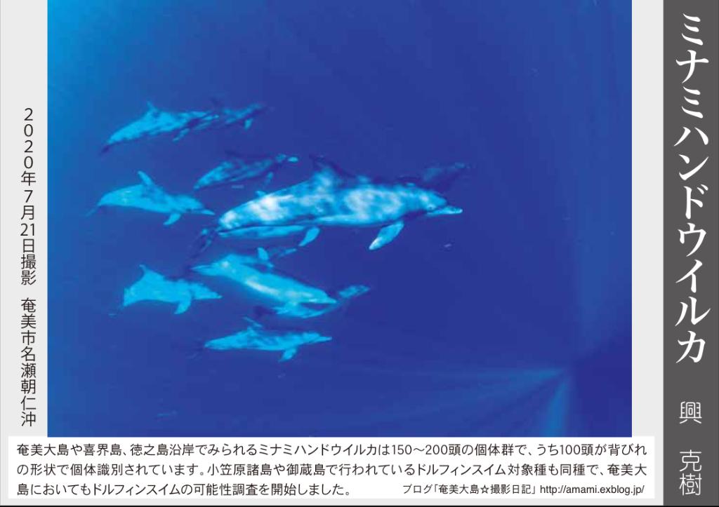 12/31 よいお年を_a0010095_12532521.jpg
