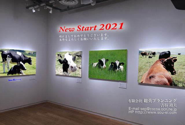 2021丑年(210101)_a0087804_14460168.jpg
