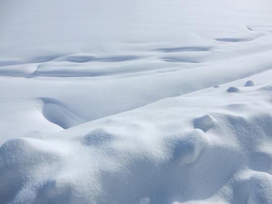 雪と空_d0366590_15123890.jpg