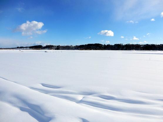 雪と空_d0366590_15123960.jpg