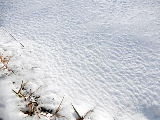 雪と空_d0366590_15152078.jpg