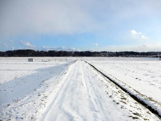 雪と空_d0366590_15152098.jpg