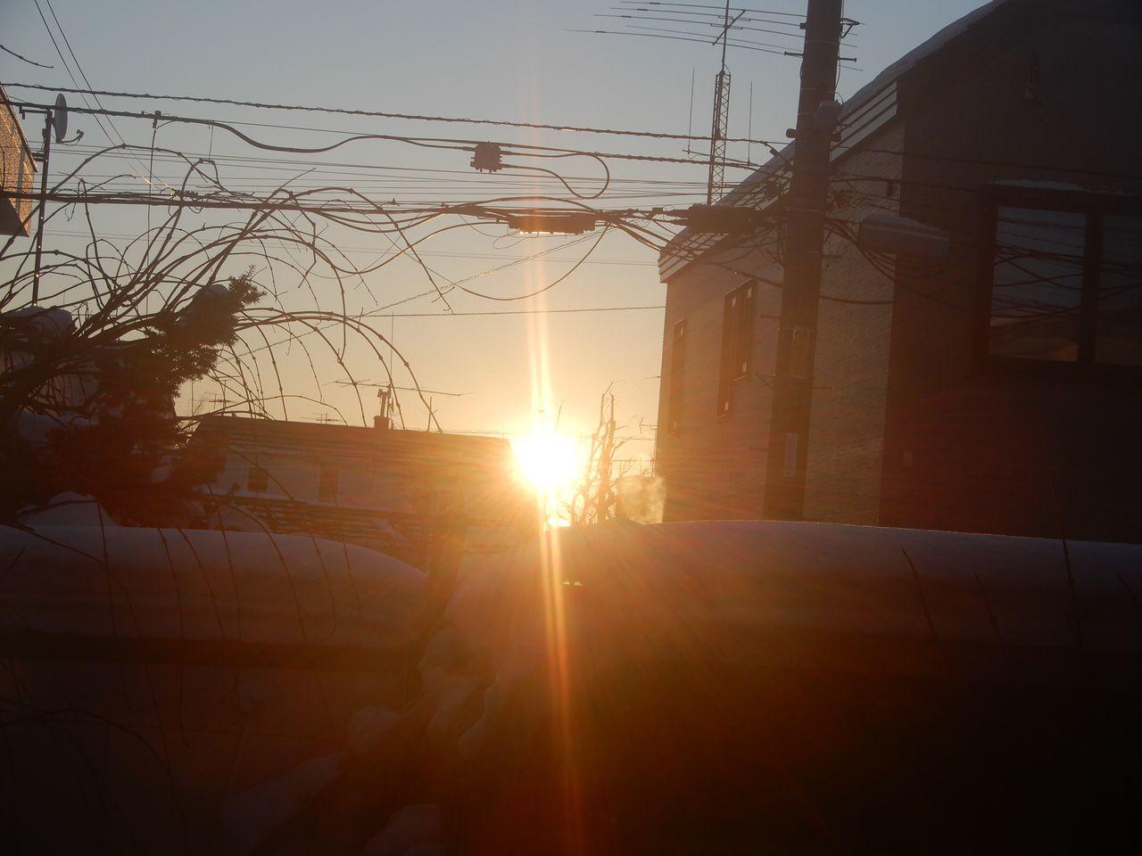 穏やかな正月2日_c0025115_21484965.jpg