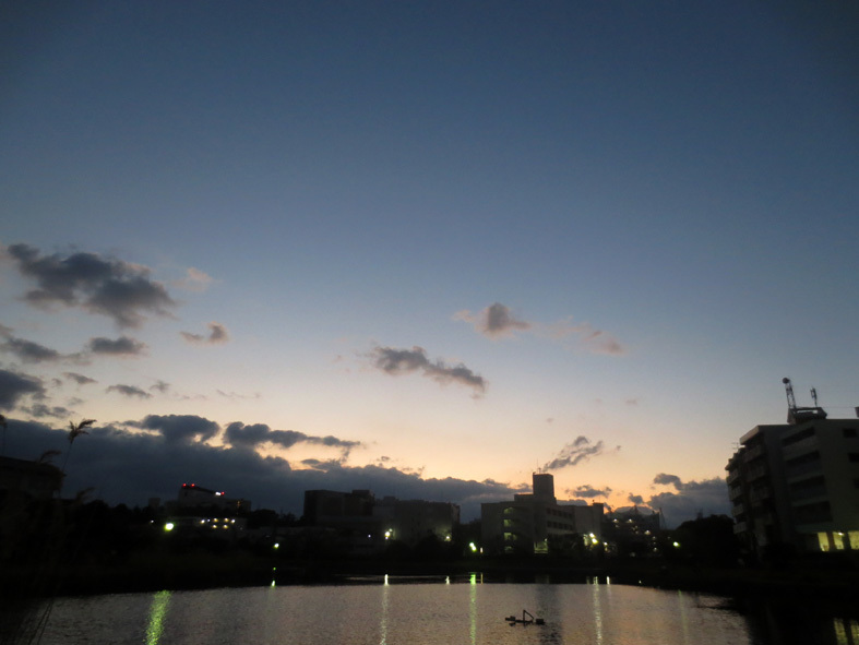 ■新春二日目の雲と夢想──週替わりの夕暮れ[1/2]_d0190217_23064069.jpg