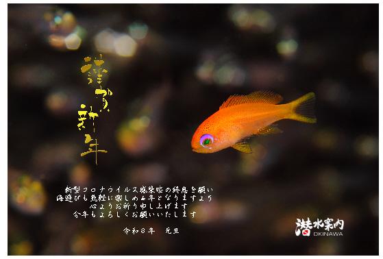 21.1.3 謹賀新年_b0100730_19234461.jpg