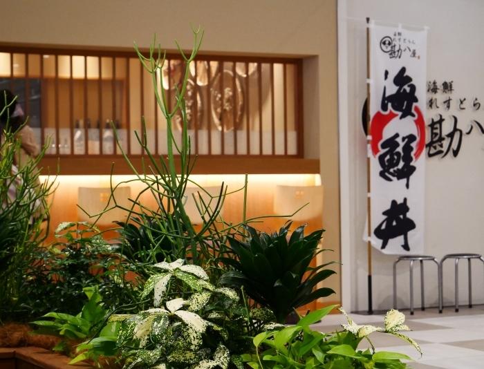新春風景 キーノ和歌山にて  2021-01-05 00:00_b0093754_21410458.jpg