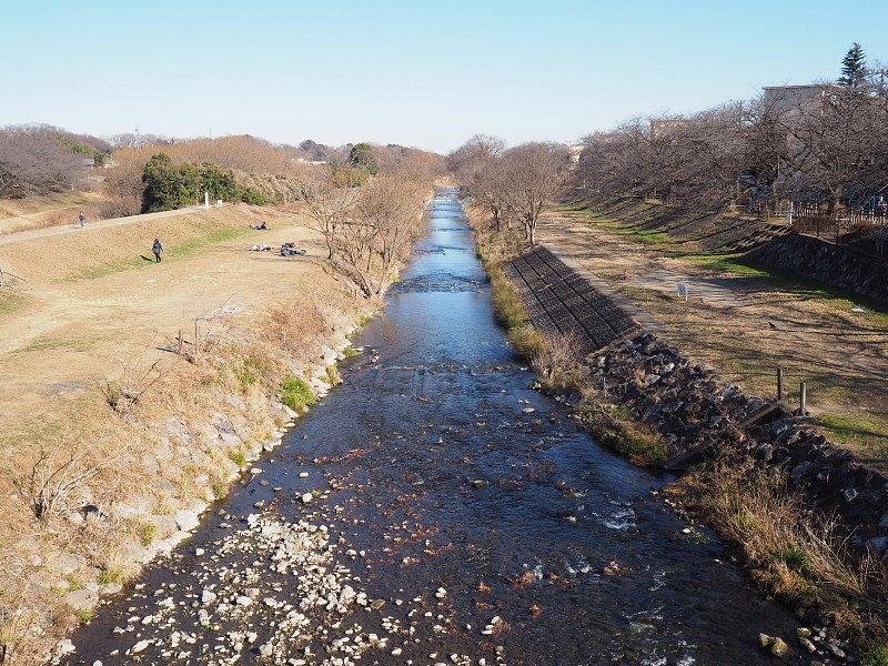 【カメラ散歩】武蔵野の風情・柳瀬川と清瀬金山緑地公園_b0008655_15462648.jpg