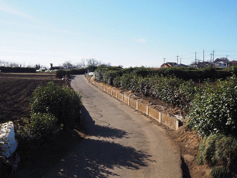 【カメラ散歩】武蔵野の風情・柳瀬川と清瀬金山緑地公園_b0008655_15501702.jpg