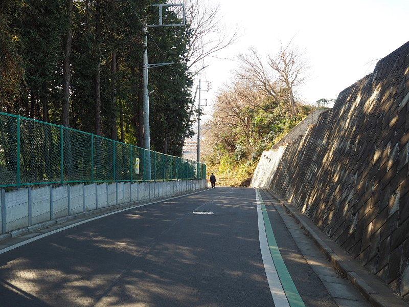 【カメラ散歩】武蔵野の風情・柳瀬川と清瀬金山緑地公園_b0008655_15505056.jpg