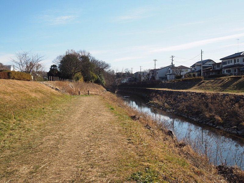 【カメラ散歩】武蔵野の風情・柳瀬川と清瀬金山緑地公園_b0008655_15535361.jpg