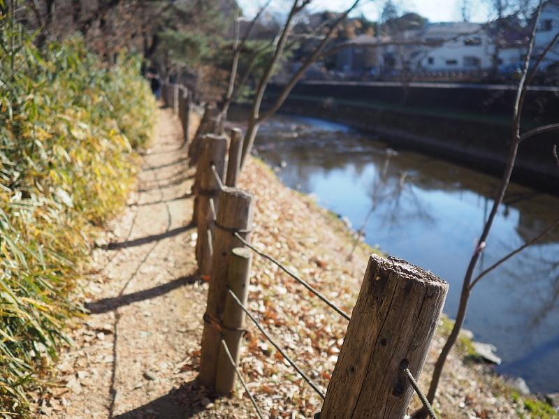 【カメラ散歩】武蔵野の風情・柳瀬川と清瀬金山緑地公園_b0008655_15550403.jpg