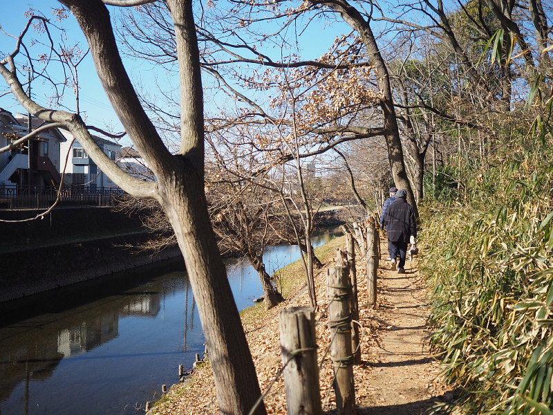 【カメラ散歩】武蔵野の風情・柳瀬川と清瀬金山緑地公園_b0008655_15551813.jpg