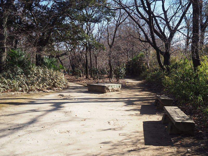 【カメラ散歩】武蔵野の風情・柳瀬川と清瀬金山緑地公園_b0008655_15554880.jpg