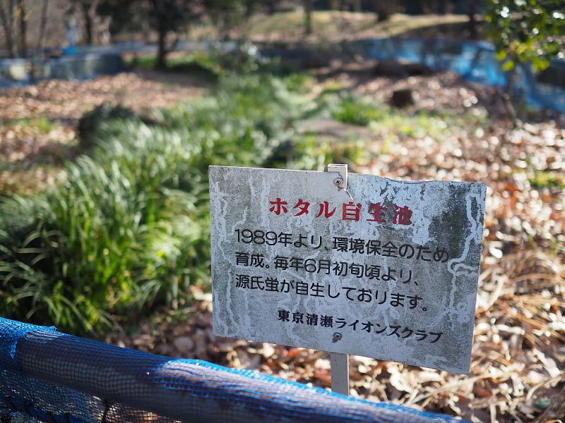 【カメラ散歩】武蔵野の風情・柳瀬川と清瀬金山緑地公園_b0008655_15560131.jpg