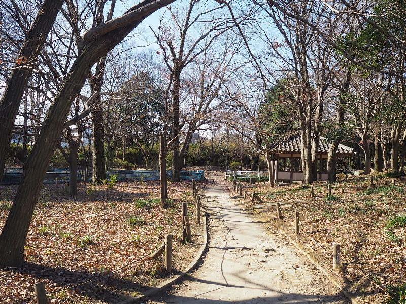 【カメラ散歩】武蔵野の風情・柳瀬川と清瀬金山緑地公園_b0008655_15565282.jpg
