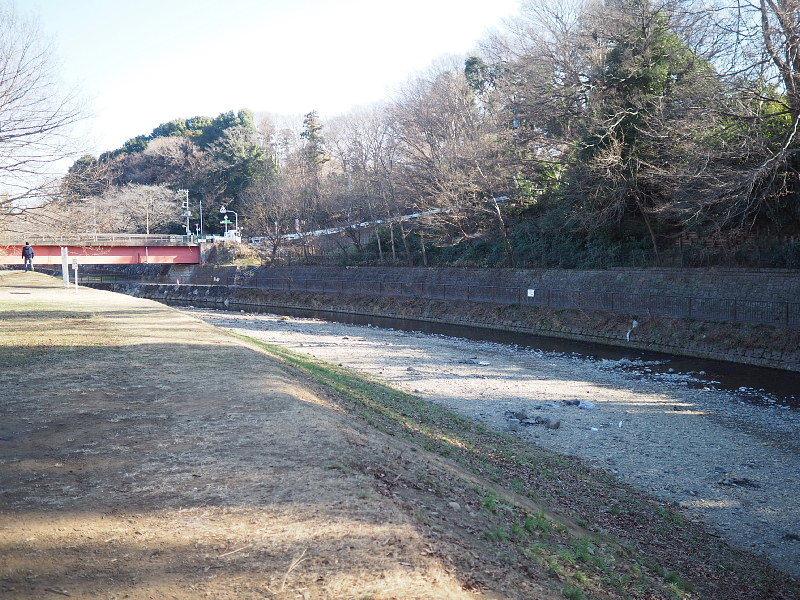 【カメラ散歩】武蔵野の風情・柳瀬川と清瀬金山緑地公園_b0008655_15572368.jpg