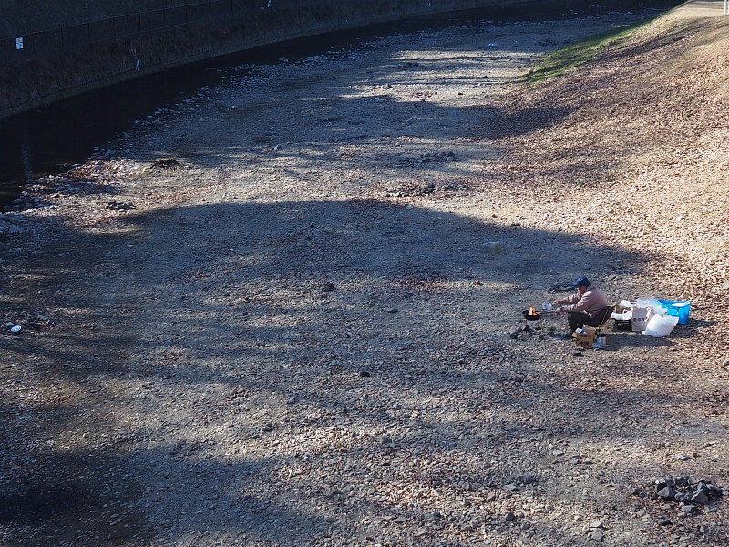 【カメラ散歩】武蔵野の風情・柳瀬川と清瀬金山緑地公園_b0008655_15573426.jpg
