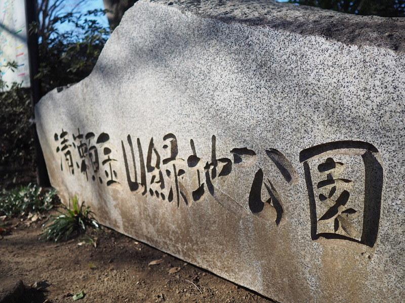 【カメラ散歩】武蔵野の風情・柳瀬川と清瀬金山緑地公園_b0008655_15591214.jpg