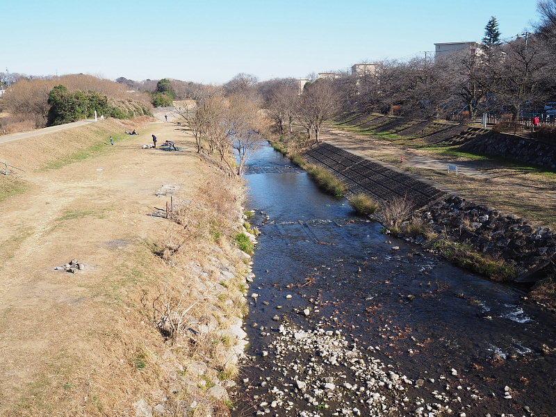 【カメラ散歩】武蔵野の風情・柳瀬川と清瀬金山緑地公園_b0008655_16000596.jpg