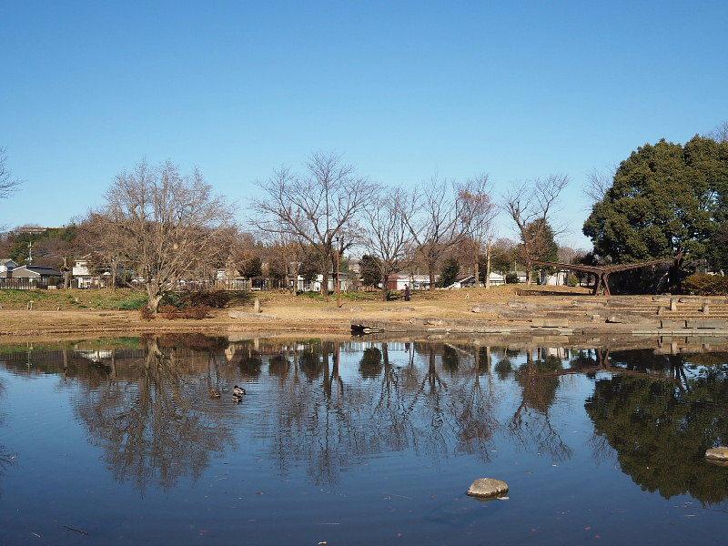 【カメラ散歩】武蔵野の風情・柳瀬川と清瀬金山緑地公園_b0008655_16012303.jpg