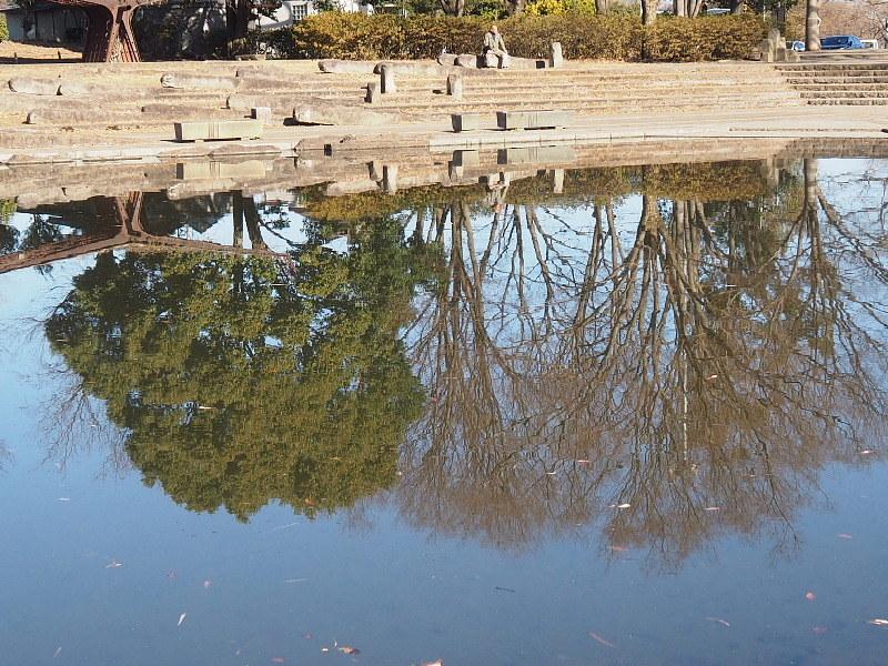 【カメラ散歩】武蔵野の風情・柳瀬川と清瀬金山緑地公園_b0008655_16032283.jpg