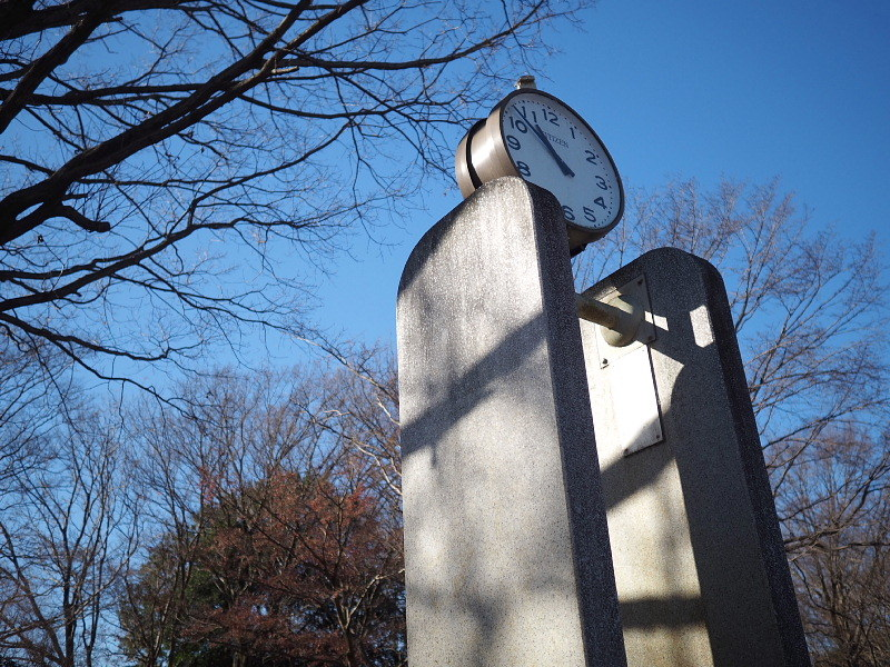 【カメラ散歩】武蔵野の風情・柳瀬川と清瀬金山緑地公園_b0008655_16033116.jpg