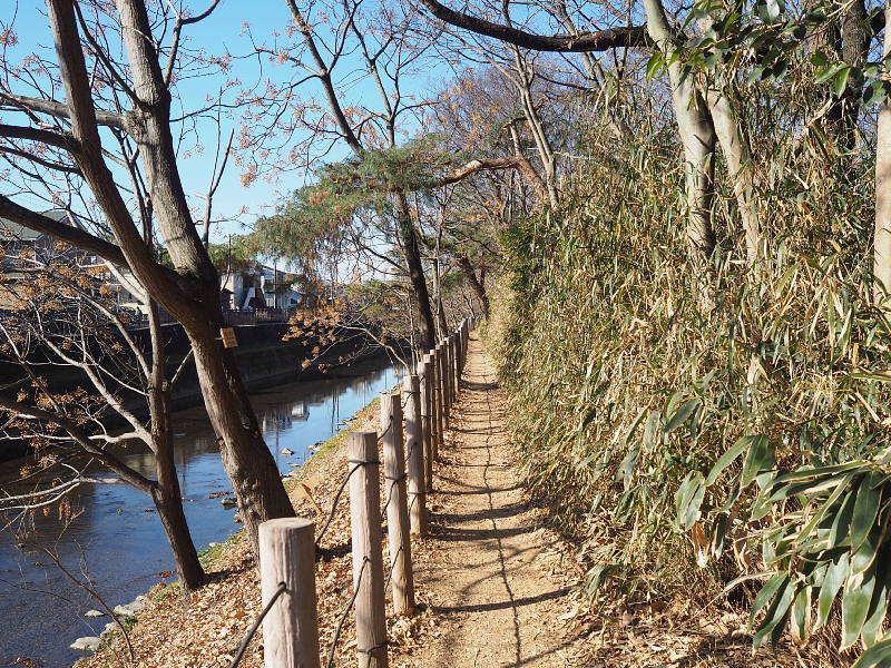 【カメラ散歩】武蔵野の風情・柳瀬川と清瀬金山緑地公園_b0008655_16042784.jpg