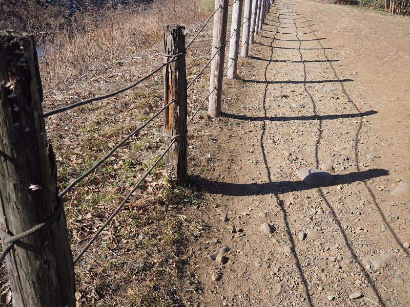 【カメラ散歩】武蔵野の風情・柳瀬川と清瀬金山緑地公園_b0008655_16044667.jpg