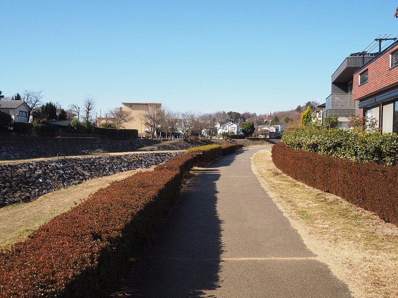 【カメラ散歩】武蔵野の風情・柳瀬川と清瀬金山緑地公園_b0008655_16045836.jpg