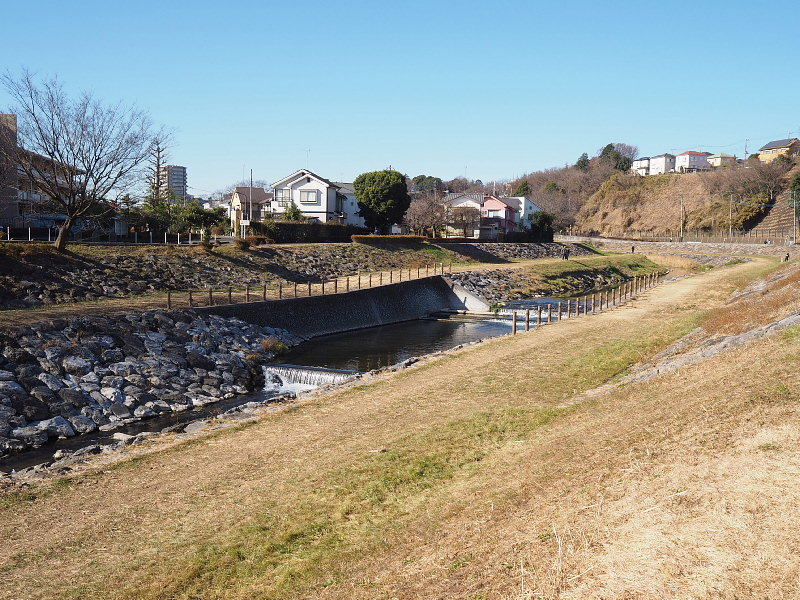 【カメラ散歩】武蔵野の風情・柳瀬川と清瀬金山緑地公園_b0008655_16050724.jpg