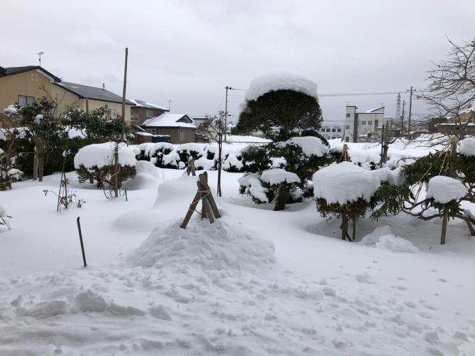 豪雪!そして寒い!_b0093660_10555384.jpg